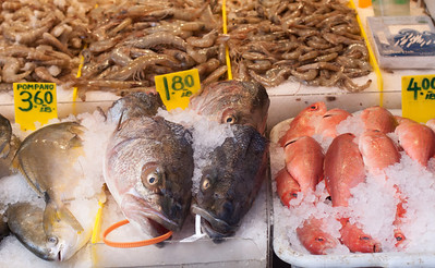 Cold Fish in Chinatown
